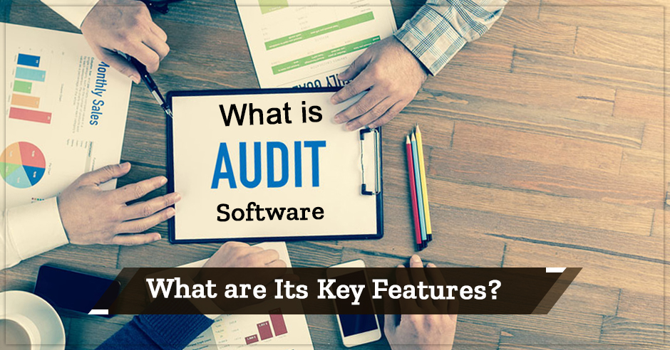 What is Audit Software and What are Its Key Features?